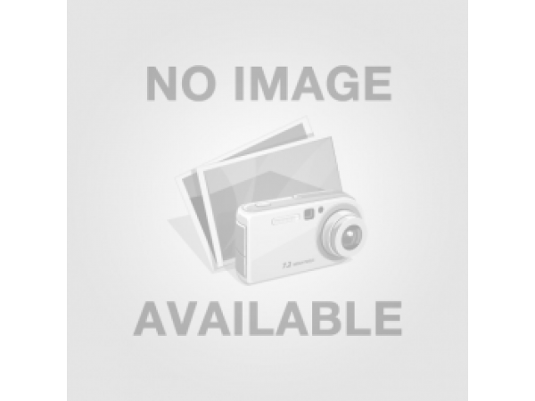 Bodor Large Format Super-Power G Pro Series